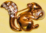 Order the Squirrel with a Pearl pin on Dharmasmart.com